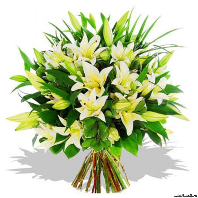 Белые лилии. и. в. Подарите. лилии. любви.  Упаковка. греческой.